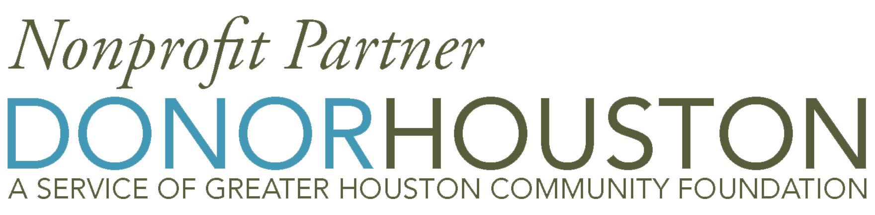 Nonprofit Partner Donor Houston